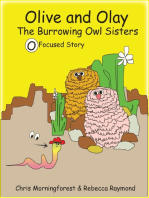 Olive and Olay - The Burrowing Owl Sisters - O Focused Story