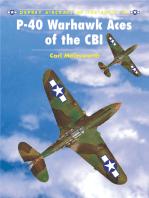 P-40 Warhawk Aces of the CBI