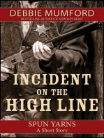 Incident on the High Line