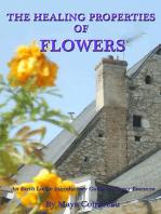 The Healing Properties of Flowers