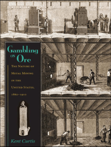 Gambling on Ore: The Nature of Metal Mining in the United States, 1860–1910