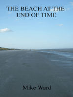 The Beach at the End of Time