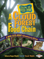 A Cloud Forest Food Chain