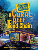 A Coral Reef Food Chain