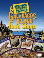 A Galápagos Island Food Chain