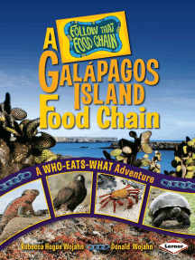 A Galápagos Island Food Chain: A Who-Eats-What Adventure