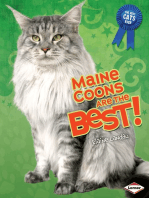 Maine Coons Are the Best!