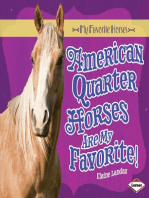 American Quarter Horses Are My Favorite!