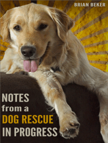Notes from a Dog Rescue in Progress