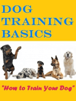 Dog Training Basics - How to Train Your Dog