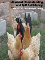 All About Homesteading and Self-Sufficiency