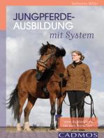 Jungpferdeausbildung mit System