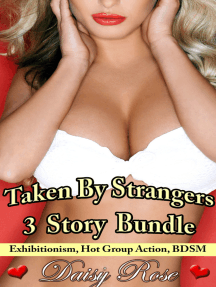 Taken By Strangers 3 Story Bundle