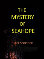 The Mystery of Seahope