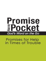 Promise In My Pocket, God's Word on the Go
