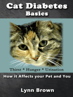 Cat Diabetes Basics