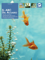 El ABC del acuario