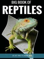 Big Book of Reptiles