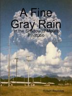 A Fine Gray Rain