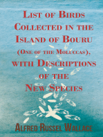 List of Birds Collected in the Island of Bouru (One of the Moluccas), with Descriptions of the New Species