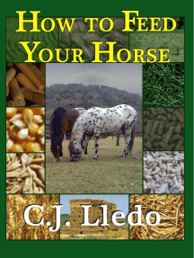 How to Feed Your Horse: An Owner's Guide to Calculating Your Horse's Diet
