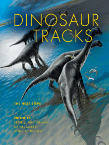 Dinosaur Tracks: The Next Steps
