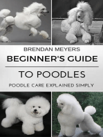 Beginner's Guide To Poodles - Poodle Care Explained Simply