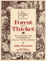 The Book of Forest & Thicket