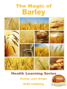 The Magic of Barley