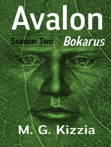 Avalon, Season Two: Bokarus