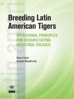 Breeding Latin American Tigers: Operational Principles for Rehabilitating Industrial Policies