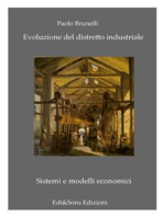 Evoluzione del Distretto Industriale