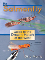 The Salmonfly
