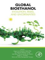 Global Bioethanol: Evolution, Risks, and Uncertainties