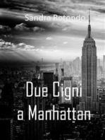 Due cigni a Manhattan