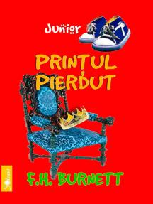 Prințul pierdut