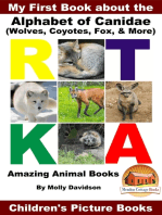 My First Book about the Alphabet of Canidae(Wolves, Coyotes, Fox, & More) - Amazing Animal Books - Children's Picture Books