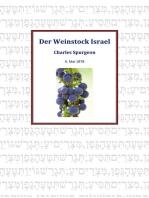 Der Weinstock Israel