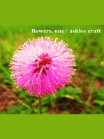 Flowers, One