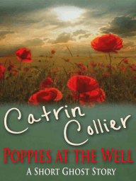 Poppies at the Well