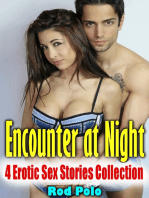 Encounter At Night