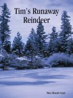 Tim's Runaway Reindeer