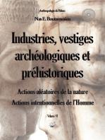 Industries, vestiges archéologiques et préhistoriques - Action aléatoire de la nature & Action intentionnelle de l'Homme - Volume VI