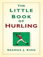 Little Book of Hurling