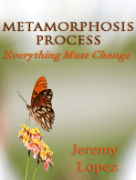 Metamorphosis Process