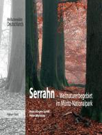 Serrahn- Weltnaturerbe im Müritz-Nationalpark