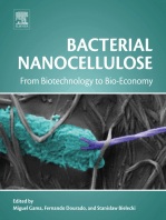 Bacterial Nanocellulose: From Biotechnology to Bio-Economy