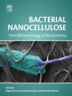 Bacterial Nanocellulose