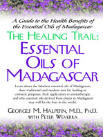 The Healing Trail: