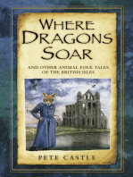 Where Dragons Soar